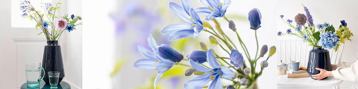 Pip Flowers & Vases