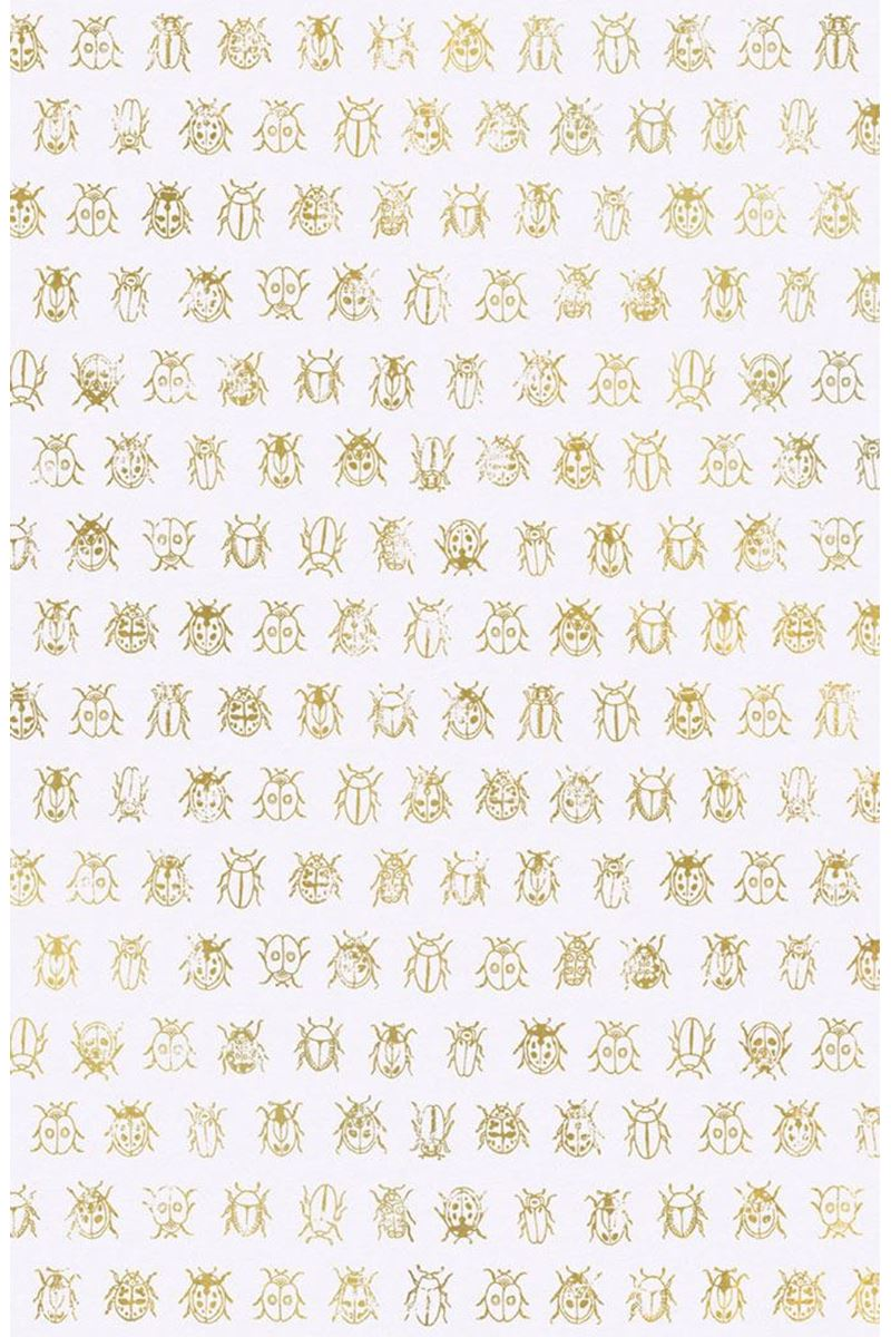 Color Relation Product Pip Studio Lady Bug Wallpaper Off White