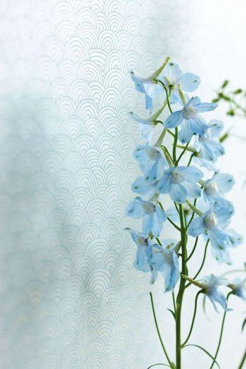 wallpaper-non-woven-flowers-blue-pip-studio-shanghai-bows