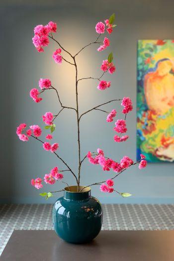 Flowering Plant Sparkling Blossom