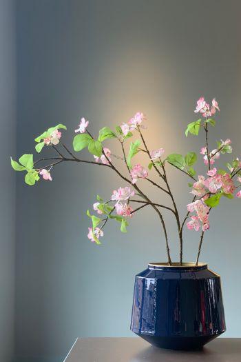 Flowering Plant Romantic Blossom