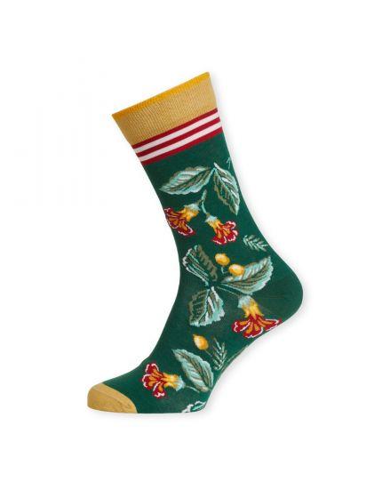 Socks Leaf Loris